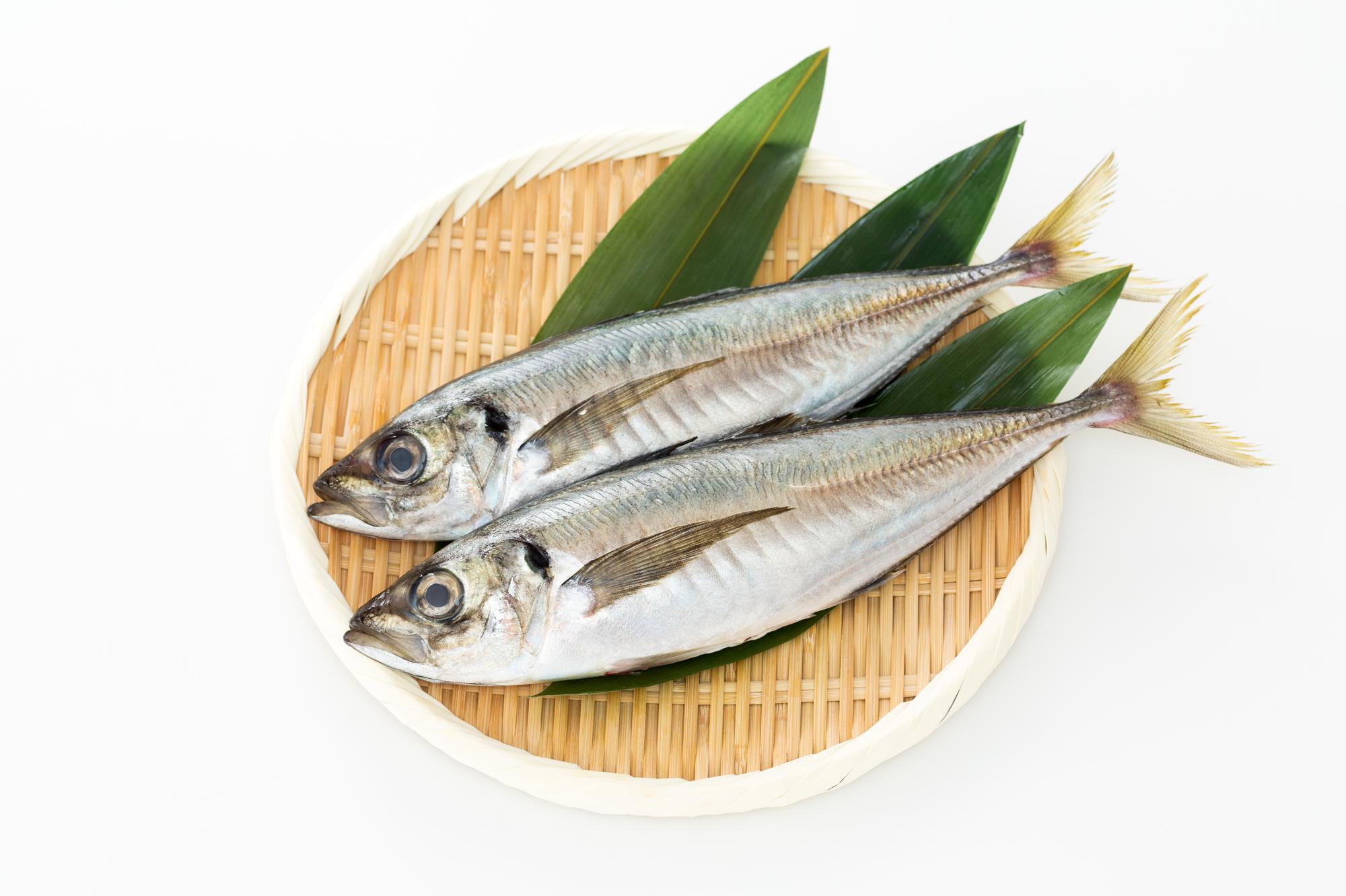 青魚 EPA DHA